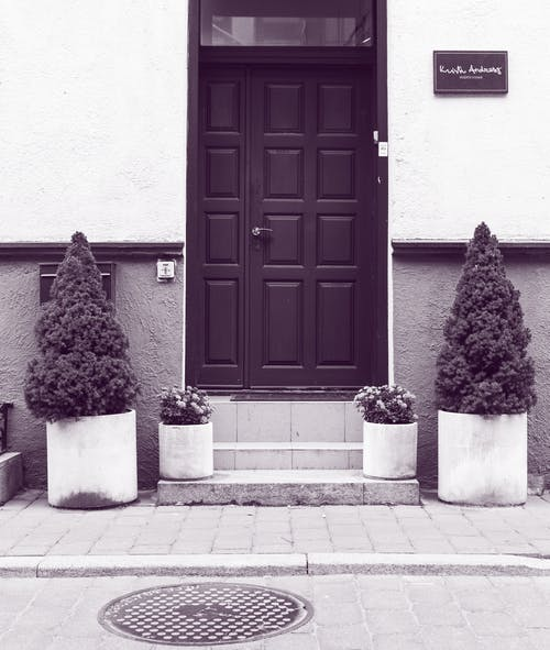 Grayscale of Black Wooden Door