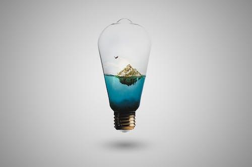 Photos gratuites de ampoule, composite, concept, écosystème