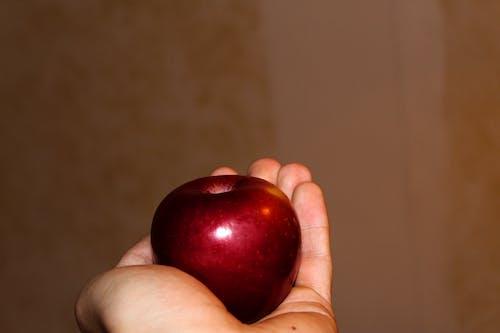 Gratis stockfoto met appel, hier, nemen, rood