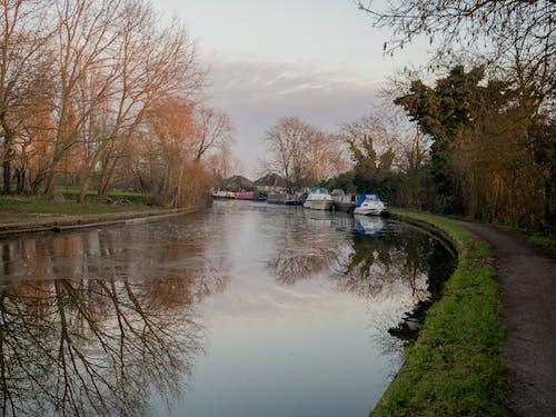 Безкоштовне стокове фото на тему «Англія, буксирний шлях, буксирування, вузька човен»