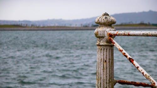 녹, 녹슨, 물, 바다의 무료 스톡 사진