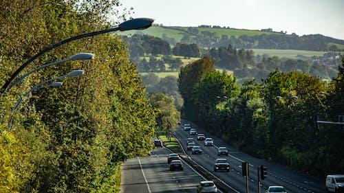 거리, 고속도로, 나무, 녹색의 무료 스톡 사진