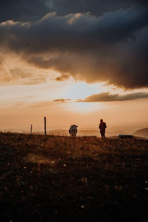 Бесплатное стоковое фото с вечер, горы, живописный, закат