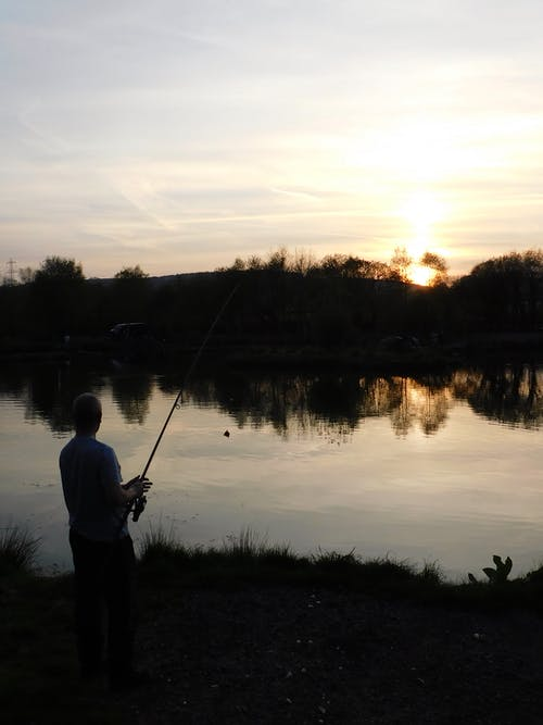 Foto stok gratis karper, memancing, nelayan