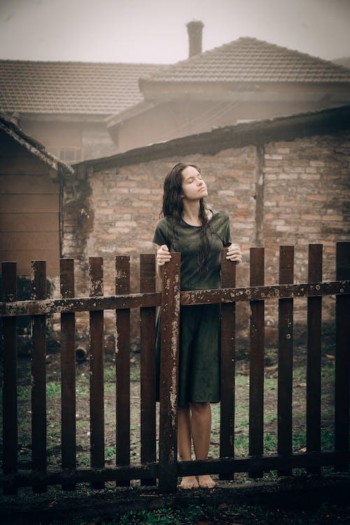 Základová fotografie zdarma na téma denní světlo, déšť, doma, dřevěný plot