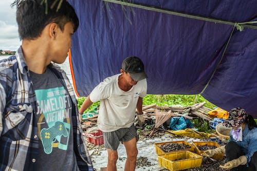 비치라이프, 사람, 생활, 홍합의 무료 스톡 사진
