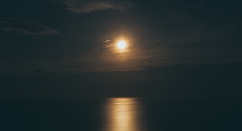 바다, 밤, 보름달의 무료 스톡 사진