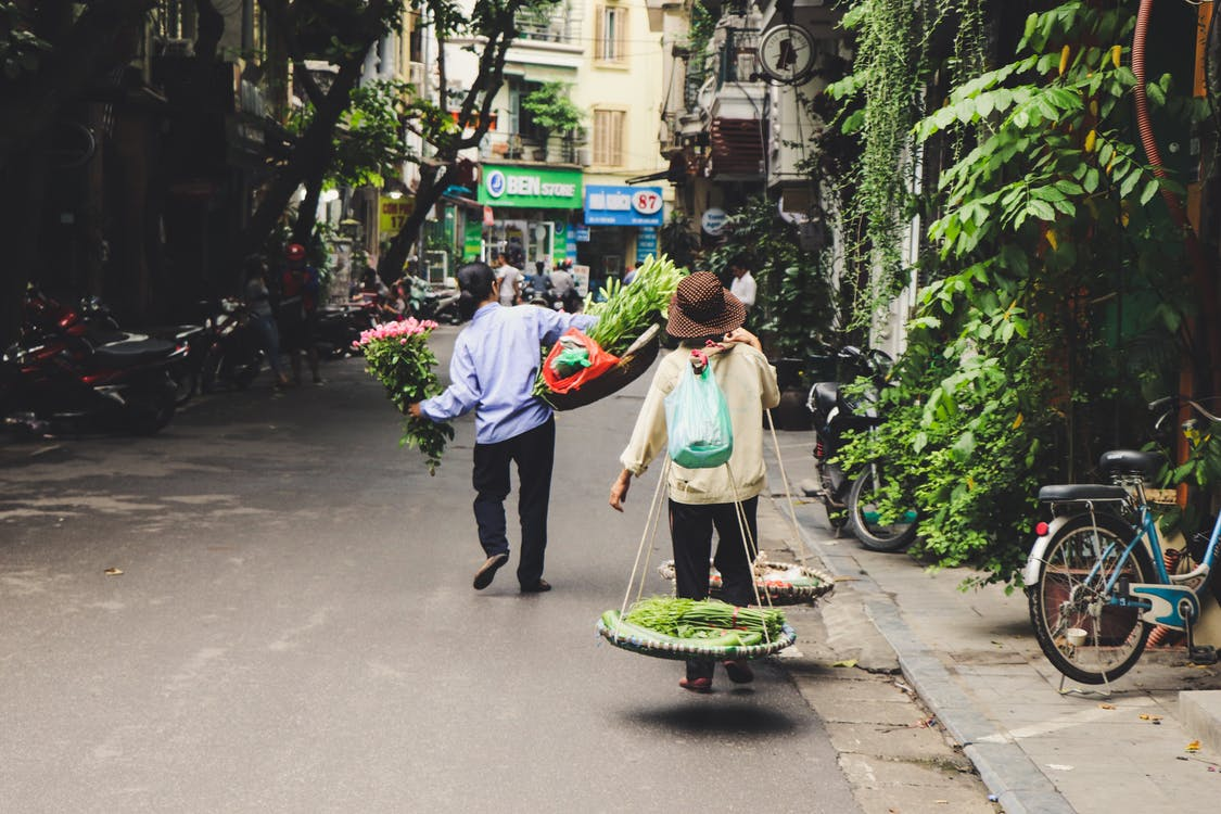 Person Carrying Vegetables