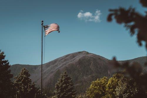 Ilmainen kuvapankkikuva tunnisteilla aamu, amerikan lippu, Amerikka, demokratia