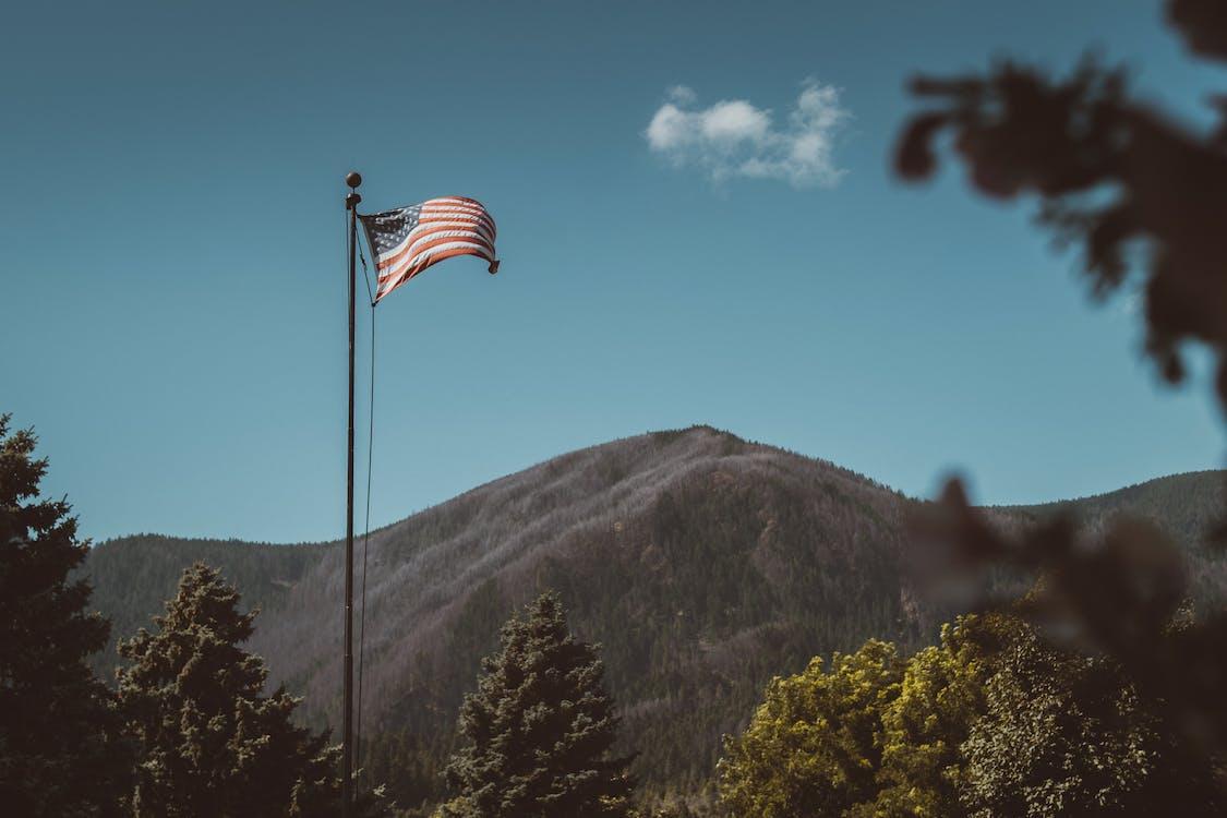 amerika, amerikanische flagge, bäume