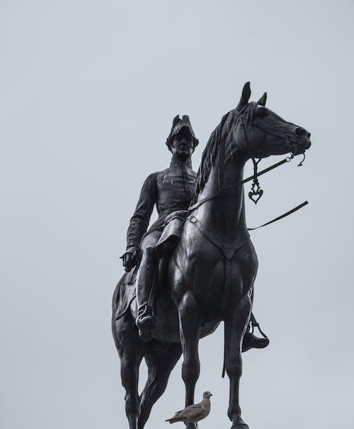 Imagine de stoc gratuită din cal, călăreț, cavalerie, cer