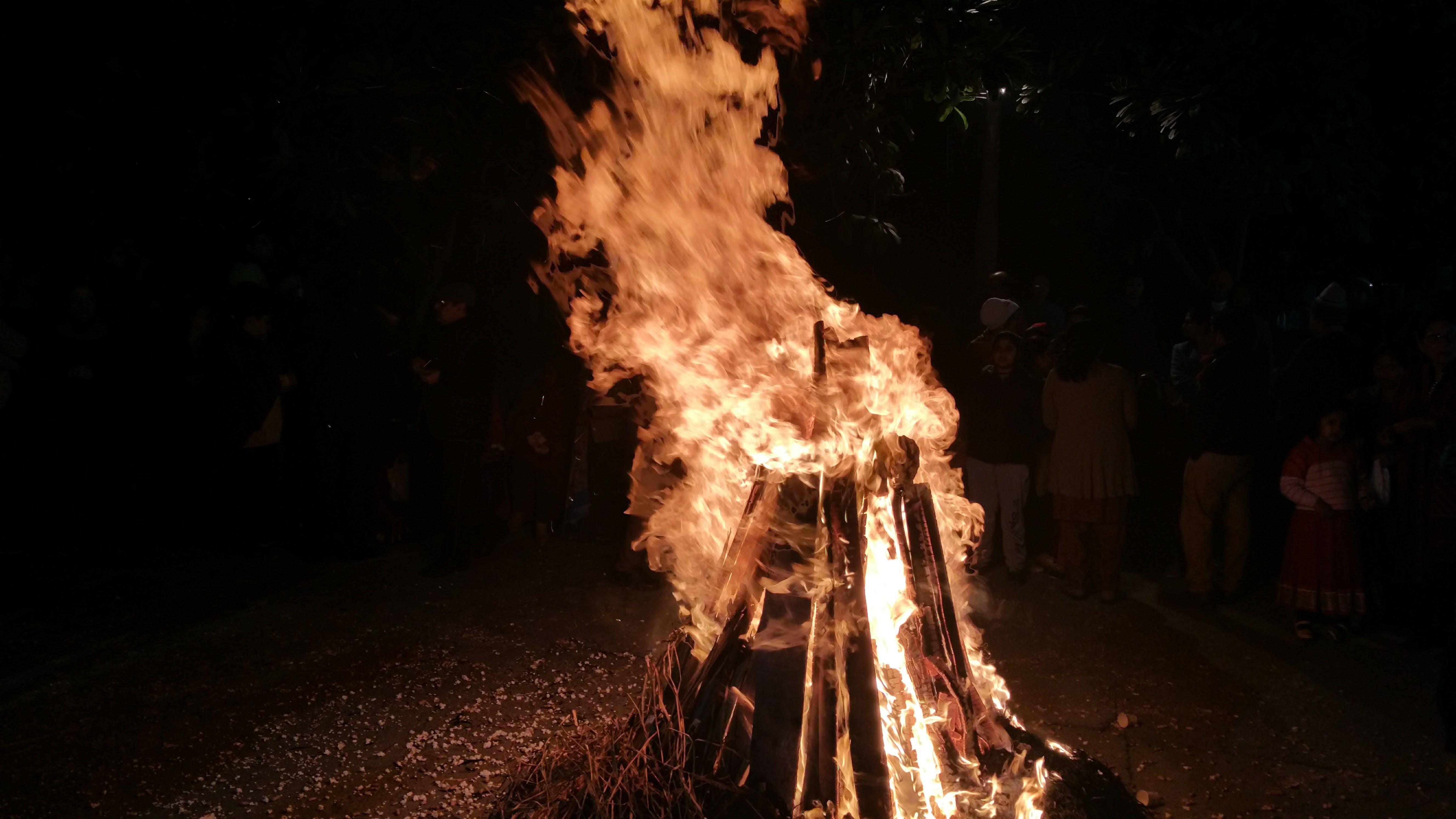 Free stock photo of bonfire, burn, dark, fire