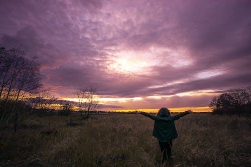 Kostnadsfri bild av bakgrundsbelyst, dagsljus, fält, frihet