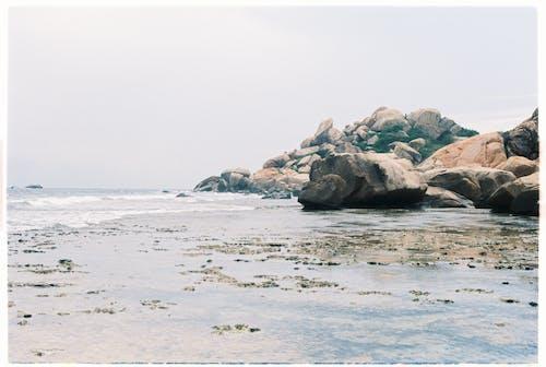 Immagine gratuita di bagnasciuga, litorale, mare, natura