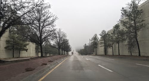 Fotobanka sbezplatnými fotkami na tému cesta, hmla, obloha pokrytá oblakmi, stromy