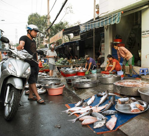 Free stock photo of fish, fish market, market, streetphotography