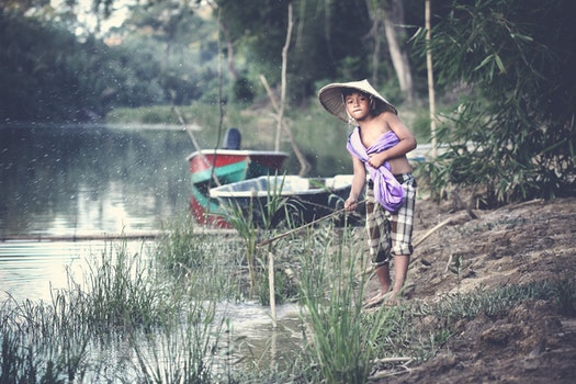 Free stock photo of person, water, boats, trees