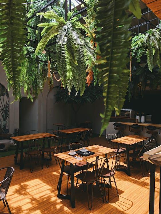 interior design, mobilia, posti a sedere