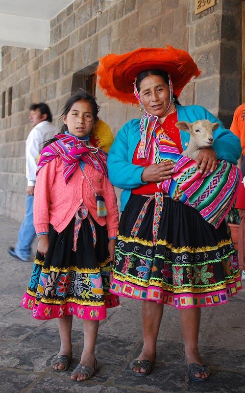 Безкоштовне стокове фото на тему «барвистий, батьки, вівці, вівця»