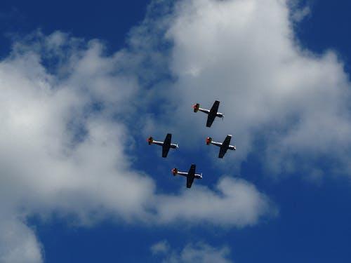 Gratis arkivbilde med blå himmel, fly, foto, fotografi
