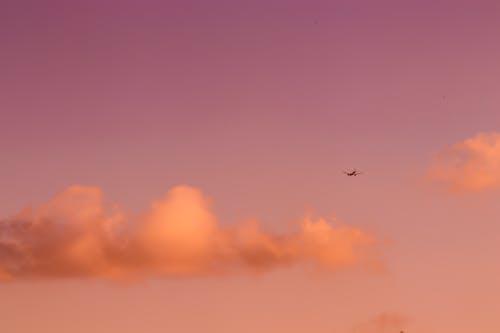 Gratis arkivbilde med fly, flyvinger, gylden horisont, luftfart