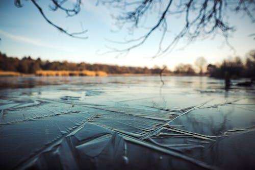 Základová fotografie zdarma na téma jezero, led, řeka, rýma