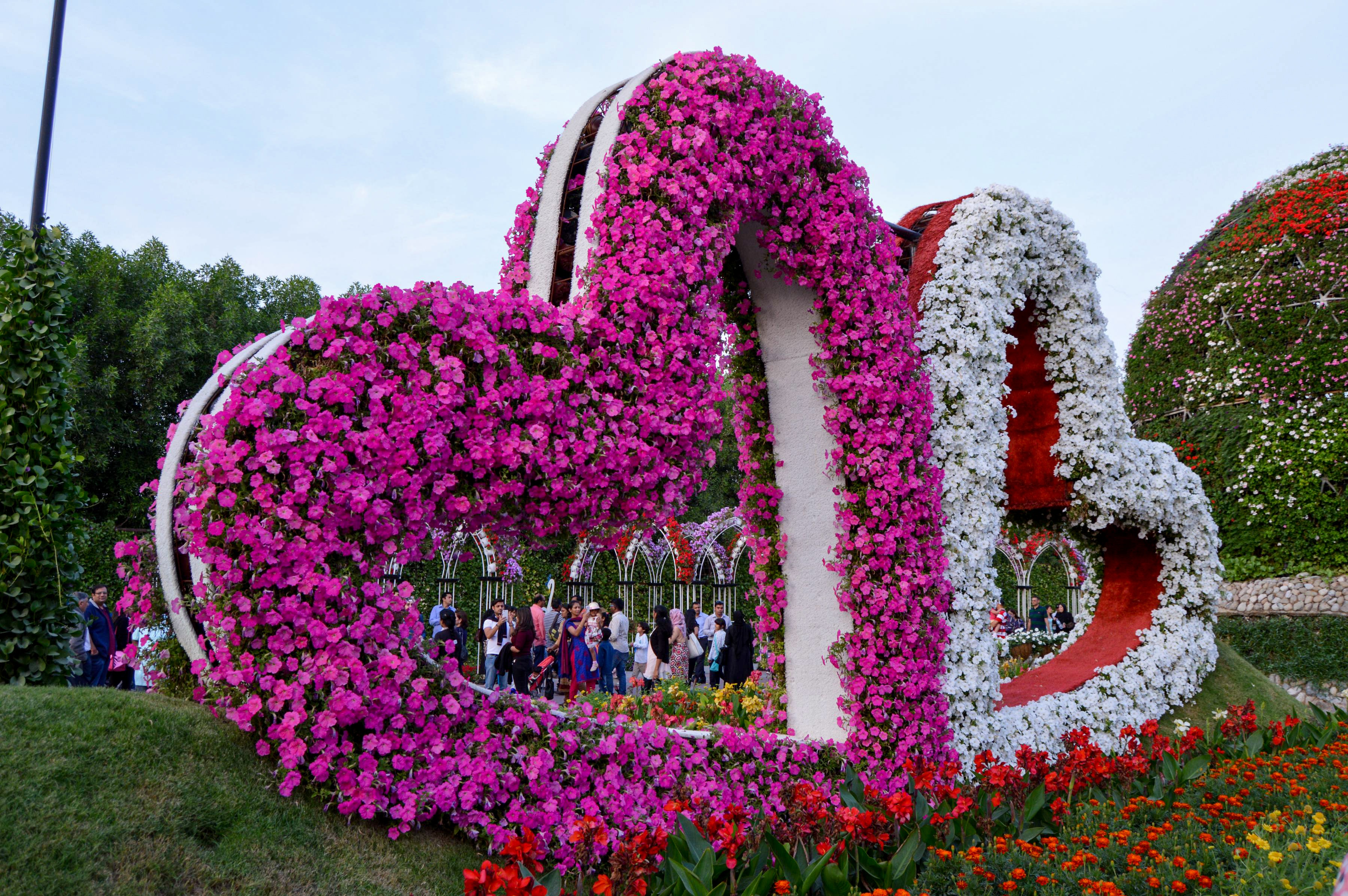 Free stock photo of flower garden flower heart garden