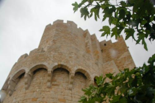 Gratis lagerfoto af borg, kirke, pyntegrønt, sky