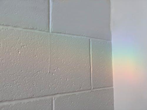 Free stock photo of brickwall, lgbt, lgbt wallpaper, lgbtq