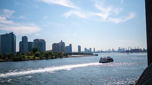 Free stock photo of river, skyline