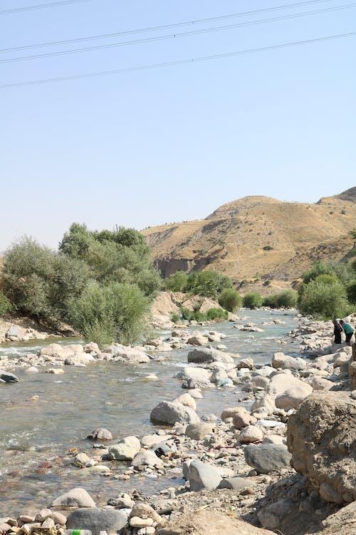 Photos gratuites de fleuve, nature, rivière sauvage