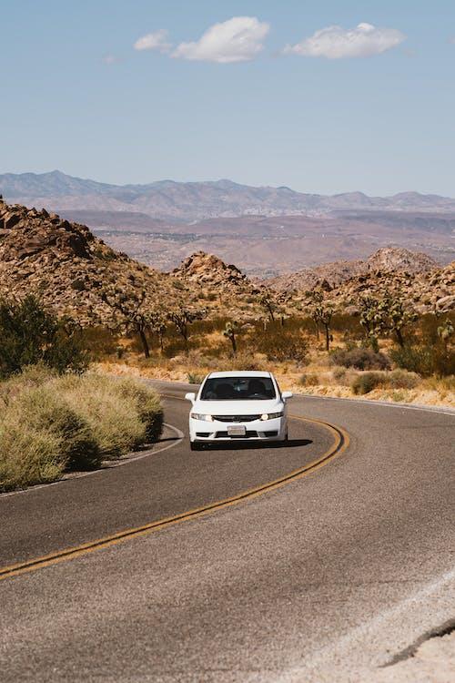Lane, アスファルト, ドライブ, モハーベ砂漠の無料の写真素材