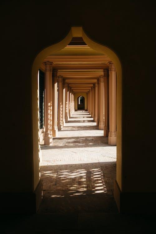 Fotos de stock gratuitas de Alemania, arquitectura, columnas, corredor