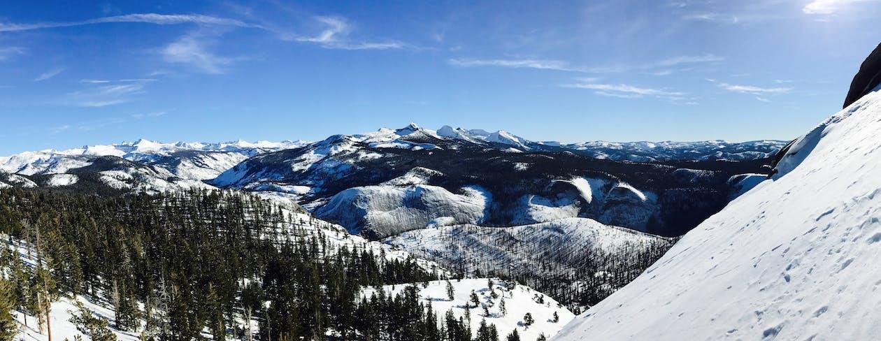 コールド, スキー, スキーリゾート
