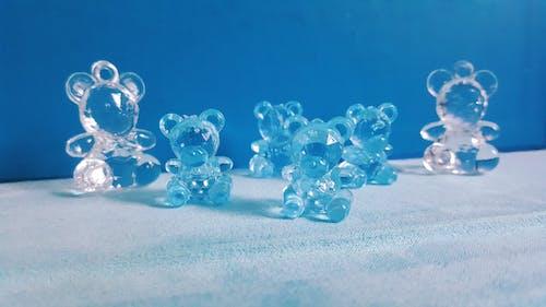 Imagine de stoc gratuită din adorabil, albastru, animale adorabile, arhitect