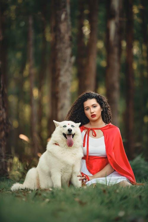 Бесплатное стоковое фото с белая собака, брюнетка, выборочный фокус, вьющиеся волосы