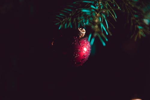 Red and Silver Christmas Baubles on Green Pine Tree