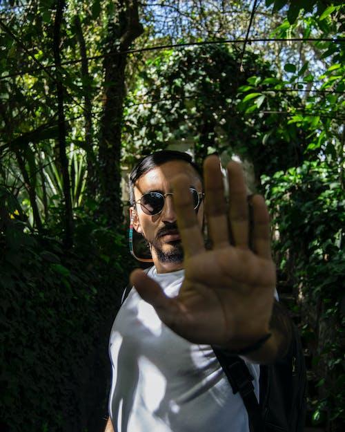 Foto d'estoc gratuïta de barba, dits, fons de naturalesa, fons verd