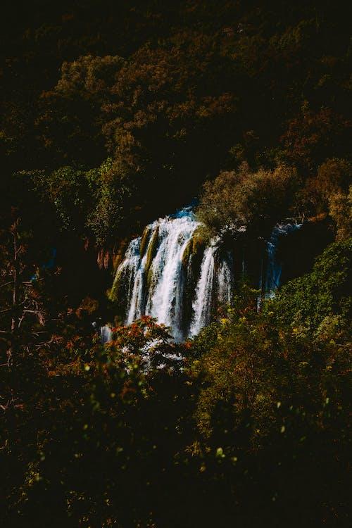 Scenic Photo Of Waterfalls