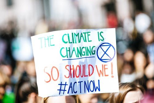 Free stock photo of activist, climate, climate activist, climate change
