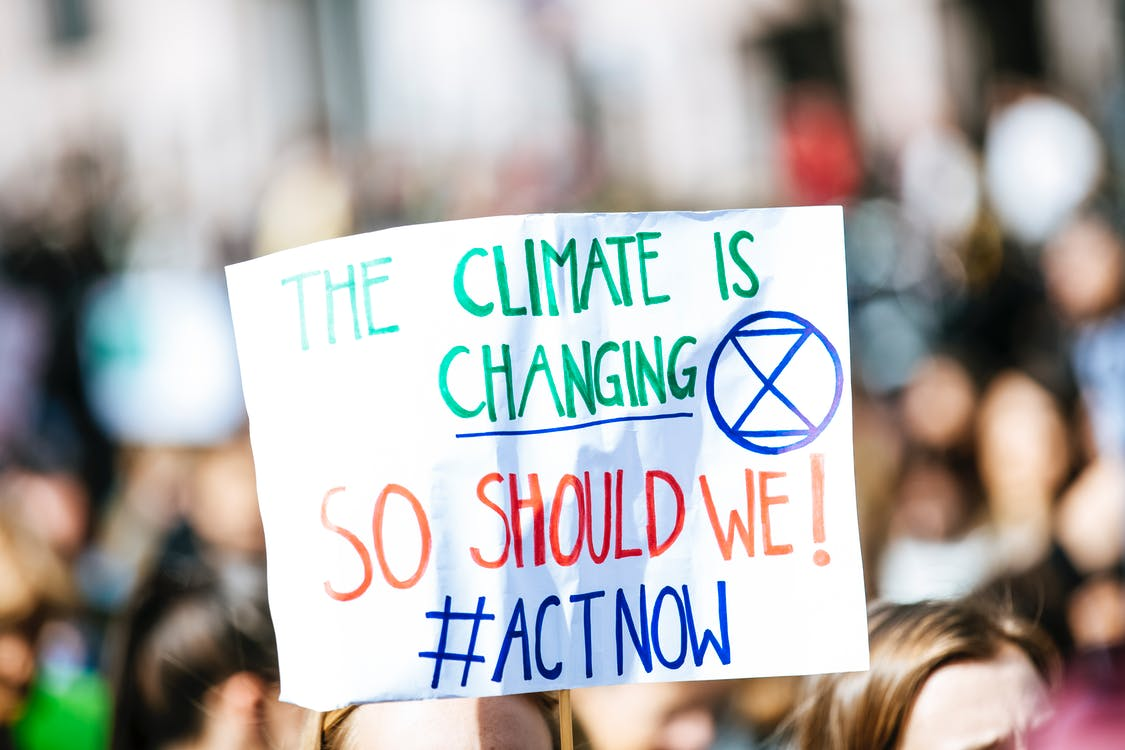 Free stock photo of activist, climate, climate activist