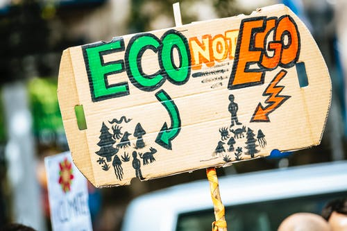 Eco Not Ego Signage