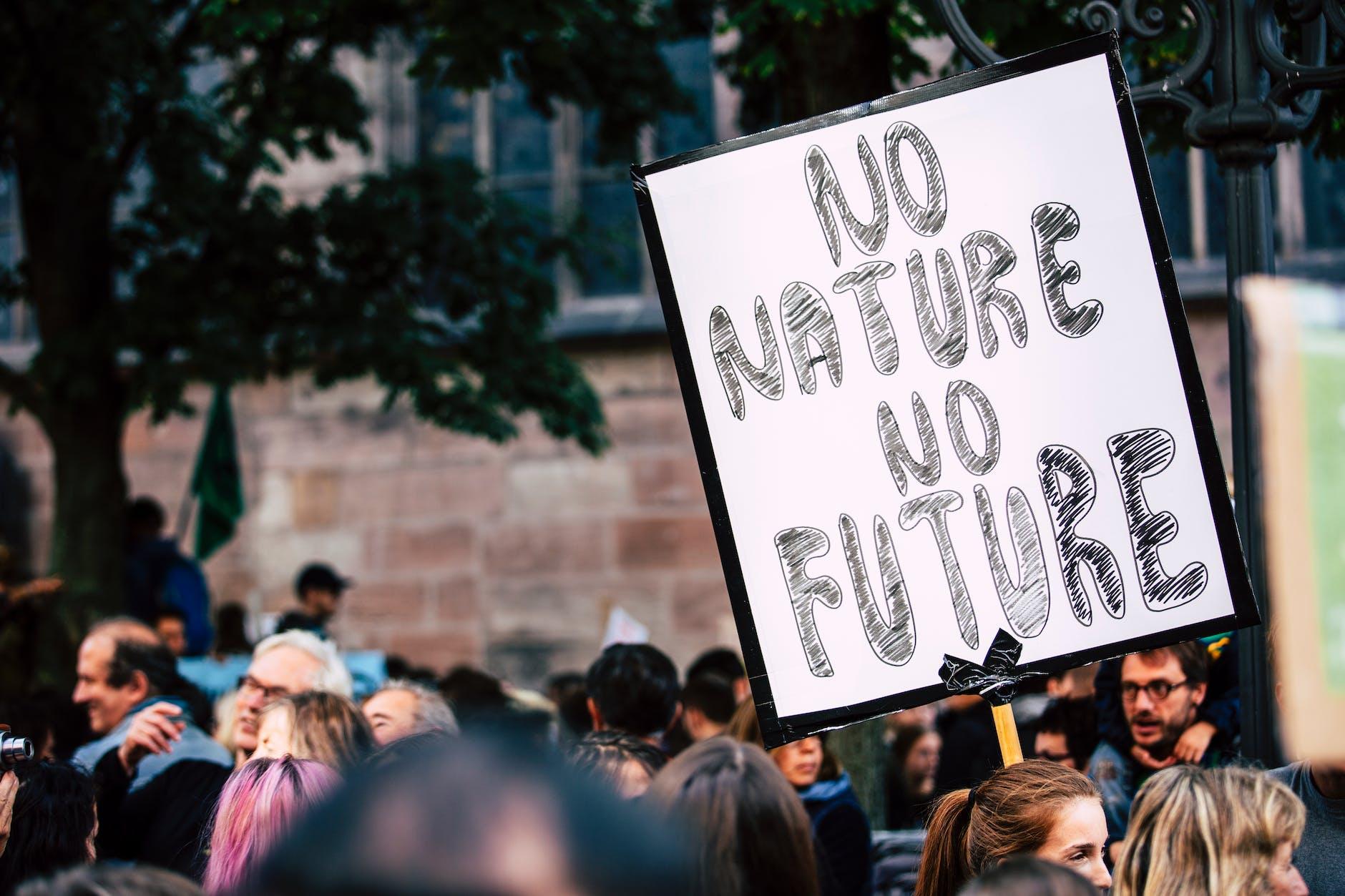 Шосте вимирання вже настало: ми помремо
