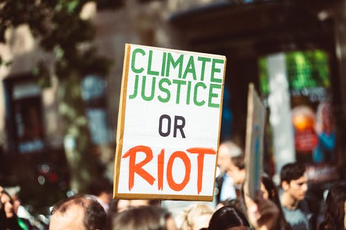 Free stock photo of activist, appeal, change, climate