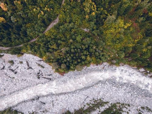 Photos gratuites de arbres, d'en haut, fleuve, flot