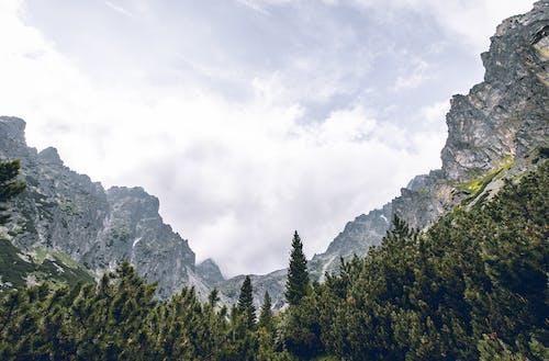 Δωρεάν στοκ φωτογραφιών με vysoke tatry, βουνό, βραχώδες βουνό, γραφικός