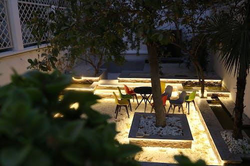 Photos gratuites de jardin, nuit