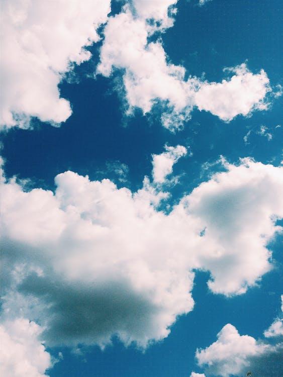 美在自然中, 藍天, 藍色 的 免費圖庫相片