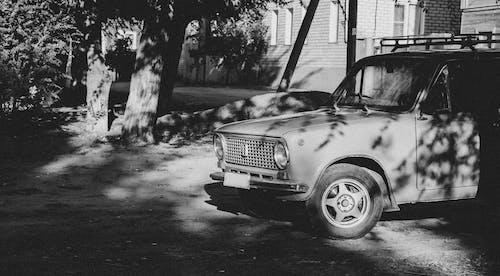Ingyenes stockfotó autó, fa, utca témában