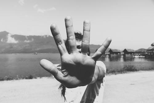 Ilmainen kuvapankkikuva tunnisteilla käsi, muotokuva, mustavalkoinen, naine